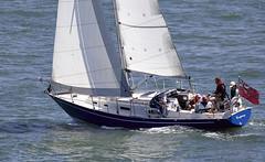 Yacht (Bernie Condon) Tags: yacht sail sailing yachting boat wind sea water southamptonwater southampton hants uk sport