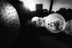 3135 (Elke Kulhawy) Tags: street bonn people art kunst elkekulhawy bnw bw blackandwhite 50mm monochrome