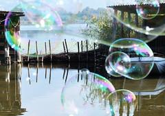 Il mondo sarebbe un posto migliore, se anche noi adulti riuscissimo ancora a stupirci delle bolle di sapone. (illyphoto) Tags: photoilariaprovenzi bolle bolledisapone lagodialserio