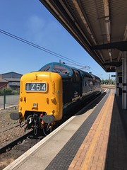 Alycidon pauses at York during her light engine move from Burton Wetmore to York NRM on Sunday 18th June 2017 © Jonathan Dye (55E) Tags: dps 3300hp napierdeltic fp englishelectric class55 nrm york alycidon deltic