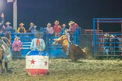 DSC_4482-Edit (alan.forshee) Tags: rodeo horse cow ride fall buck spin twirl bull stallion boy girl barrel rope lariat mud dirt hat sombrero