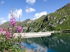 La diga del Fedaia (diegoavanzi) Tags: diga dam lago lake marmolada dolomiti dolomites trentino veneto alpi alps montagne mountains italia italy fedaia reflections riflessi