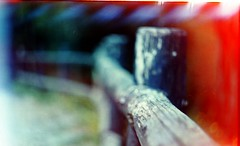 (Victoria Yarlikova) Tags: film analog 35mm zenit122 lomo outdoors retro vintage spring scan agfa expiredfilm smallformat lightleak darkroom iso100