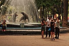 Fuente de Los Coyotes (marek69) Tags: coyoacan mexico mexicocity cdmx mex meksyk ciudaddemexico fuente coyotes fontain fontanna fontana