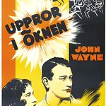 37 - I Cover the War (1937) (Gösta Åberg) (Sweden)-RESTORED thumbnail