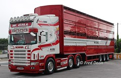 W. Gill Livestock Transport Scania 164 (04D80985). (Fred Dean Jnr) Tags: wgilllivestocktransport scania 164 v8 580 cattletruck 04d80985 charleville cork may2017