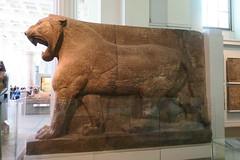 May 10: 67 Assyrian Guardian Lion (Aquafortis) Tags: travel london england art assyrian
