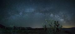 Silent Night (Night Scapes) Tags: steverengers milkyway nightsky nightphotography walkerpass kerncounty