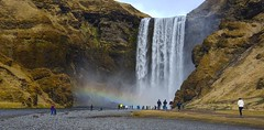 Skogafoss (Herculeus.) Tags: 2017 adults april bouldersstonerocks childchildren clouds country day europe iceland landscape mountains outdoors outside people photographers rainbows river sightseers skogaiceland skogafossiceland spring water waterfalls 5photosaday waterfall aves gulls nestingbirds