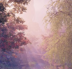 """""""A tint of morning"""" (L1netty) Tags: games screenshot trees morning light shadowwarrior2 gaming reshade flyingwildhog pc nature outdoor color 8k landscape scenery foliage videogame"""