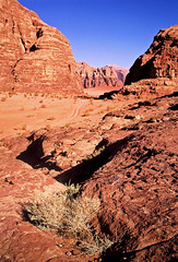 (louis de champs) Tags: minoltasrt101 agfaprecisa100 vividcolors redsand film desert wadirum jordan landscape mountains rocks pickup tracks
