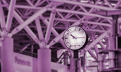 洋紅色的高鐵車站 Magenta color high-speed railway station(Kaohsiung, Taiwan) (rightway20150101) Tags: thsrc magenta station 洋紅 高速鐵路 車站 taiwan kaohsiung steelˍstructure 鋼結構
