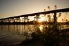 流れ橋1709・Flowing Bridge (anglo10) Tags: japan kyoto 流れ橋 橋 bridge 木津川 川 river 夕景 sunse 久世郡 京都府 菜の花 flower