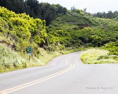 Honoapi'ilani Highway (MariachiMarcus) Tags: highway dogwood52 hawaii maui nakalele dogwood2017 dogwoodweek16 leadinglines