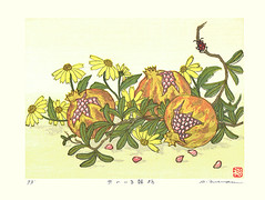 Pomegranate and tickseed (Japanese Flower and Bird Art) Tags: flower pomegranate punica granatum lythraceae tickseed coreopsis asteraceae hirokazu fukuda modern woodblock print japan japanese art readercollection