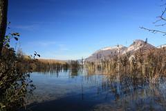 Saint-Jorioz (kdb²) Tags: annecy lac lake hautesavoie savoie alps alpes france french français water montains montagne sky ciel roseaux herbes herbs eau bleu blue nuage cloud