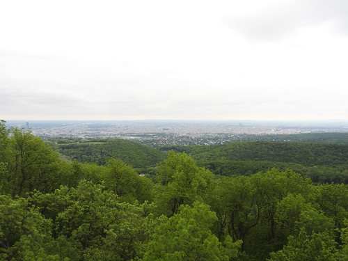 Vienna from afar