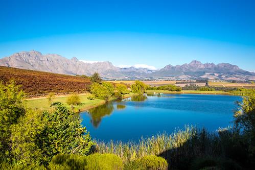 Stellenbosch_BasvanOort-31