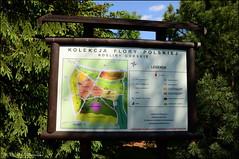 DSC_8854 (facebook.com/DorotaOstrowskaFoto) Tags: ogródbotaniczny kwiaty powsin warszawa