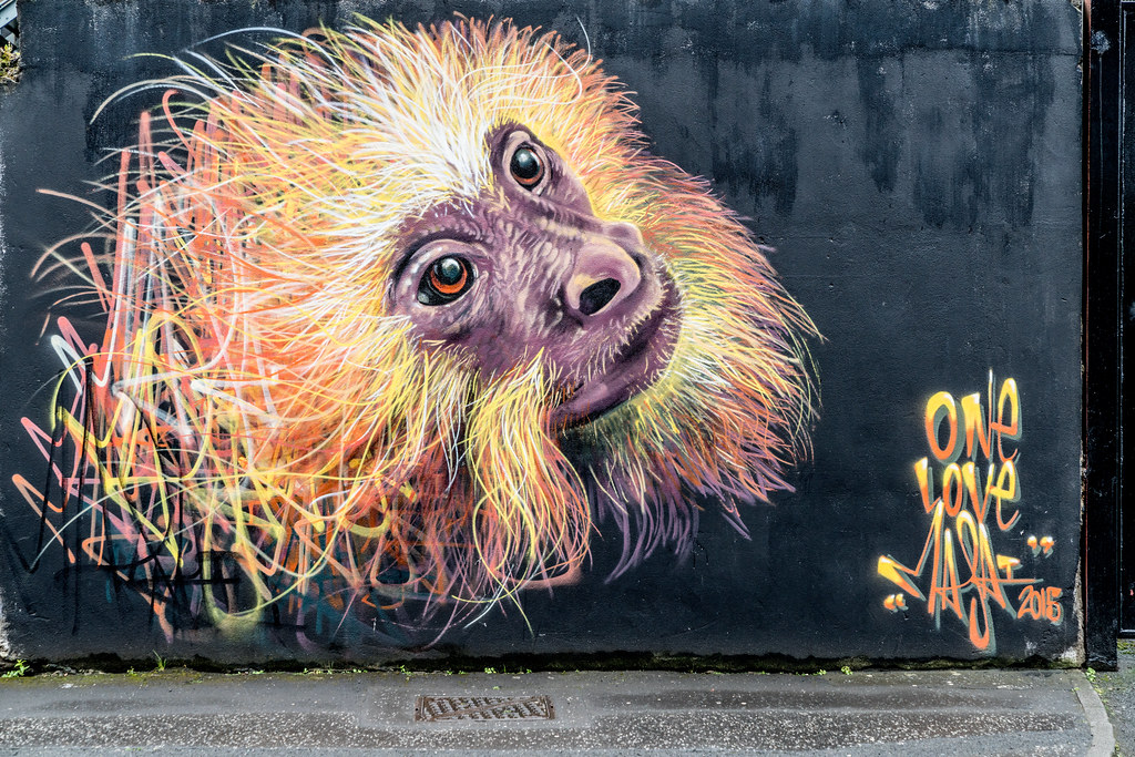 STREET ART AND GRAFFITI IN BELFAST [ANYTHING BUT THE FAMOUS MURALS]-129150