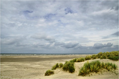 Beautiful Beach (Hindrik S) Tags: beach strân strand kust coast küste clouds wolken sky loft lucht hemel heaven himel bluesky blauw blau landscape landschap lânskip helm helmgras dunen duinen dunes kym horizon kimen sân sand zand panorama noordzee noardsee northsea nordsee terschelling skylge fryslân friesland nederland netherlands niederlande sonyphotographing sony sonyalpha a57 α57 slta57 tamron tamronspaf1750mmf28xrdiiildasphericalif 2017 amount