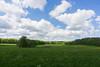 Swabian Skies (matthewjpollard) Tags: sky field germany swabian a6000 wide