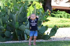 Cactus flowering, she's relaxing (Chirstaphordale) Tags: paradise sooc natural 85mm d3300 nikon 2 patches shirt custom beautiful flower daughter summer spring cute cactus