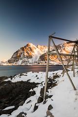 Morninglight in Henningsvær (martinzorn) Tags: lofoten norway travel landscape norwegen norge fish winter snow