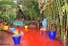 MAROCO 01-2015 019 (Elisabeth Gaj) Tags: maroco012015 elisabethgaj maroco afryka travel garden marracech