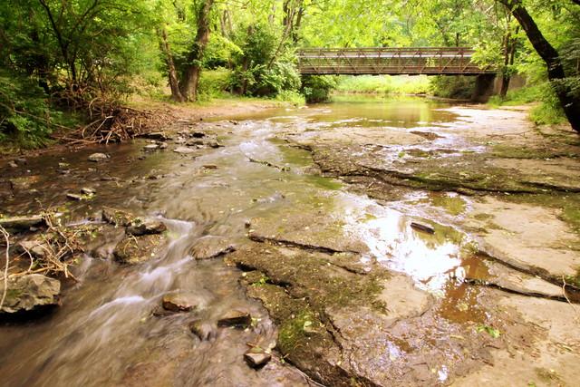 Little Harpeth River - Brentwood, TN
