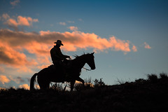 Wangler Heading Home (blackhawk32) Tags: hideout hideoutlodge wyoming silhouette cowboy horse clouds sunset shell
