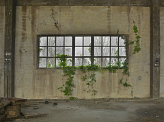 industrial building RZ01 #17 (jourbexia) Tags: italy italian europe european building buildings rural ruralexploration exploration interior inside room rooms window windows decay decayed decaying derelict dereliction abandoned disused empty urbex urbanexploration ux urban architecture industry industrial factory factories