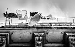 sous les jupes des filles. (francis_bellin) Tags: 2017 noiretblanc chaleur séchage marseille lepanier bellevie juin linge flickr groupe