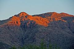 Red Mountains (craigsanders429) Tags: sunrisephotography sunrise mountains tucsonarizona santacatalinamountains red earlymorninglight arizona desert sonorandesert