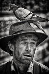 Birds on the Brain (Andy J Newman) Tags: man street portrait paul bird candid pidegeon head hat nikon d500 silverefex blackandwhite bath