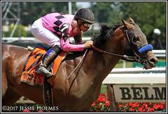 West Coast wins the Easy Goer (Spruceton Spook) Tags: horseracing horses belmontpark westcoast easygoer