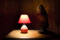 The owls are not what they seem (Davide Steno) Tags: twinpeaks twin peaks davide steno flashbackfilms davidesteno lynch owl