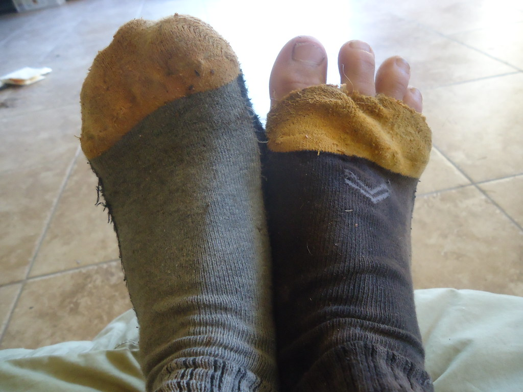 The Worlds Best Photos Of Smelly And Socks - Flickr Hive Mind-2682