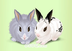 910008 (Osoq.com) Tags: wwwosoqcom pet animal caricature
