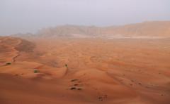 Desert shoot in Dubai (therealmarky) Tags: desert dubai sand dunes filmshoot camels sunlight backlight landscape nature