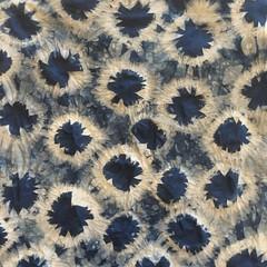 1980 (SOFennell) Tags: workshop ncmuseumofart indigodyeing shibori