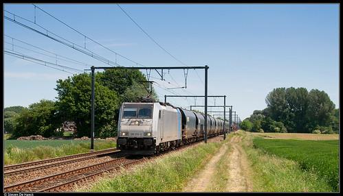 Lineas 186 252-3 @ Brugelette