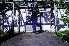 Botanical Gardens Instameet - 27.05.2017 (3 of 4) (MidWorldMo) Tags: mid instagram instameet botanicalgardens may gardens publicgathering publicgardens dreamy sun sunny sunshine playground dreamesque abstract abstractionist sony sonya6000 a6000 sonyalpha sigma sigma30mmf14dcdn sigma30mmf14