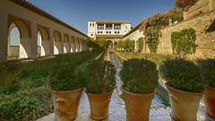Patio de la Acequia Generalife II (rschnaible) Tags: granada alhamdra spain espana europe outdoor sightseeing tour tourist patio de la acequia generalife