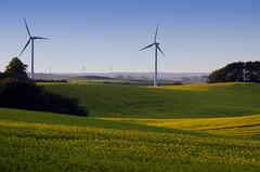 Green power (Timmy_L) Tags: pentaxda18135f35wr ecological wind turbine power electricity landscape rapeseed ystad sweden skåne raps