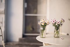 Have a great week! (ninasclicks) Tags: flowers glass jar table street photography
