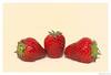 Sunbathing. (wimmerstefan) Tags: 105mmf28vr nikond7100 macro red strawberries sun