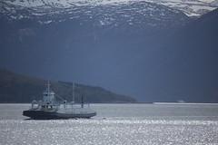 Stryn (sindre97) Tags: ferge ferje ferry ferries norge norway norvegen noreg sunnmøre ålesund møre og romsdal mr fjord storfjorden sea blue green fjord1 mrf fsf