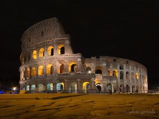 Rome - Colosseo