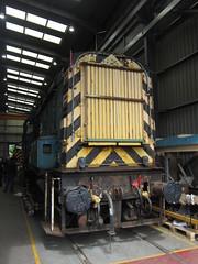 IMG_5405 - BR Class 08 Diesel Shunter 08635 (SVREnthusiast) Tags: severnvalleyrailway svr severnvalley severn valley railway brclass08dieselshunter08635 br class08 dieselshunter 08635